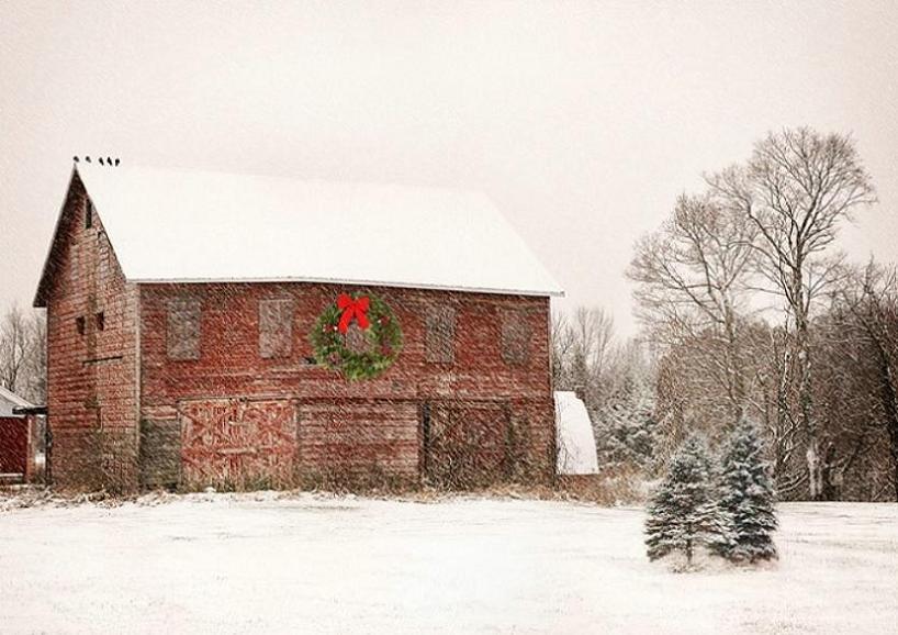 christmas barn | a CHRISTMAS carol | Pinterest | Barn, Holidays ...